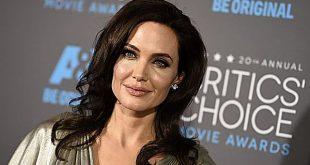 Angelina Jolie tiene un nuevo pretendiente y es muy parecido a Brad Pitt